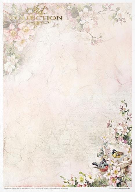 Zestaw kreatywny na papierze ryżowym - Rosy summertime * Creative set on rice paper - Rosy summertime