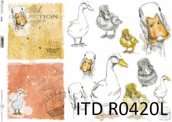 R0420L * gęś, mała gąska, głowy gęsi, napisy 'happy farm'