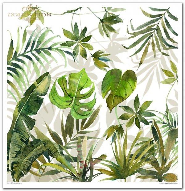 Tropical dreams*tropikalne marzenia-z serii podróż marzeń: muszle, żaglówka, ryby, konik morski, meduzy, głębia, pelikan, tukan, palmy, plaża, liście monstaery, kwiat hibiskusa, motyl, kraby, rozgwiazdy, kwiaty do wycinania...