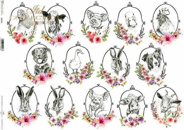 R0421L * kury, koguty, kaczki, gęsi, kozy, krowy, psy, świnie, króliki, zające