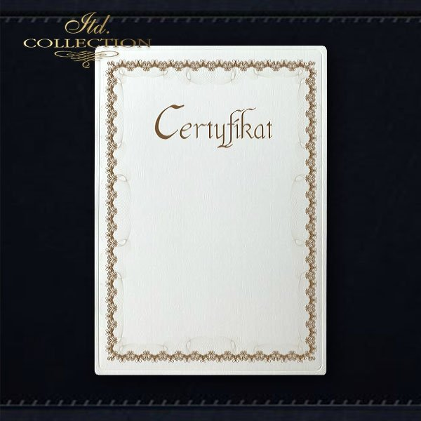dyplom DS0295 certyfikat