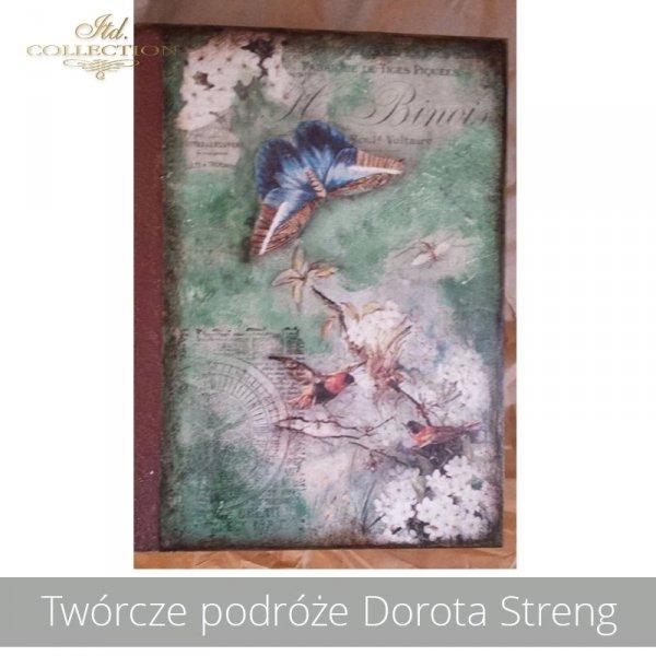 20190426-Twórcze podróże Dorota Streng-R0976-example 01