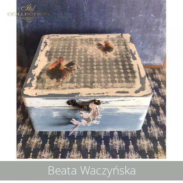 20190430-Beata Waczyńska-R1351-A4-R0207L-ITD0647-ITDS0444-example 01