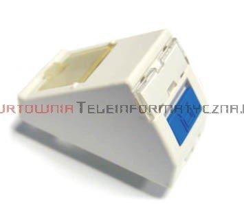 SOLARIX adapter kątowy 1mod. 1 x RJ45 z plakietką opisową i klapką