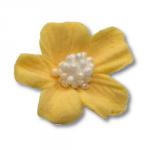 Niezapominajka kwiaty cukrowe 10szt żółte