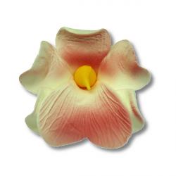 Miltonia kwiat cukrowy na tort 5cm różowy 1szt
