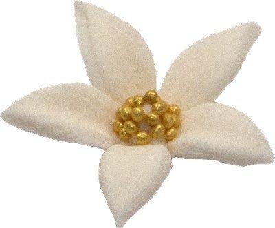 Płomyk kwiatki cukrowe 10szt ecru