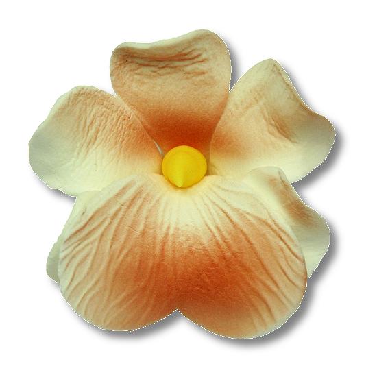 Miltonia kwiat cukrowy na tort 5cm łososiowy 1szt