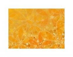 Kwiaty - pomarańcz - reprodukcja