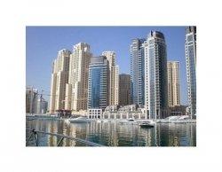 Dubai Marina Buildings - reprodukcja
