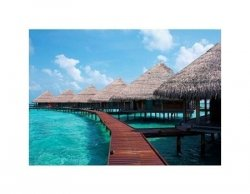 Water Villas in The Ocean. Maldives. - reprodukcja