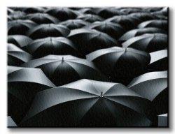 Obraz do salonu - Czarne parasolki - 120x90 cm