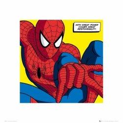 Spiderman Great Power - reprodukcja