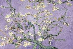 Vincent Van Gogh Kwitnący migdałowiec - plakat