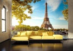 Fototapeta do salonu - Tour Eiffel Paris France - 366x254 cm