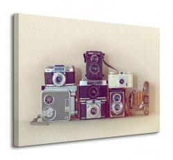Obraz na płótnie - Camera Collection