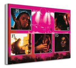 Pink Floyd (Live) - Obraz na płótnie