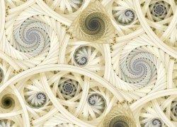 Spiralne fractale - fototapeta - 320x230 cm