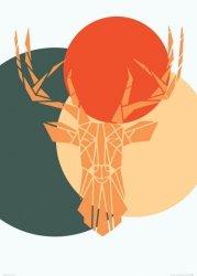 Deer colour - plakat B2