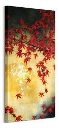 Japanese Maple - obraz na płótnie