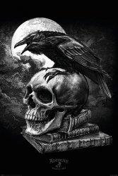 Plakat - Alchemy (Poe's Raven) - Kruk na czaszce