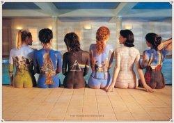 Pink Floyd (back) - plakat