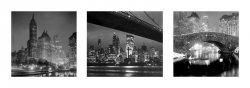 New York Nights - reprodukcja