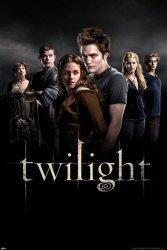 Twilight (Group) - plakat