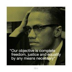 Malcolm X (Życiowe cytaty) - reprodukcja