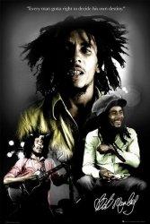 Bob Marley (destiny) - plakat