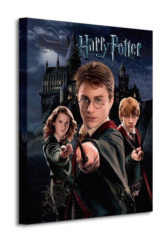 Obraz do sypialni - Harry Potter (Harry Ron Hermione)