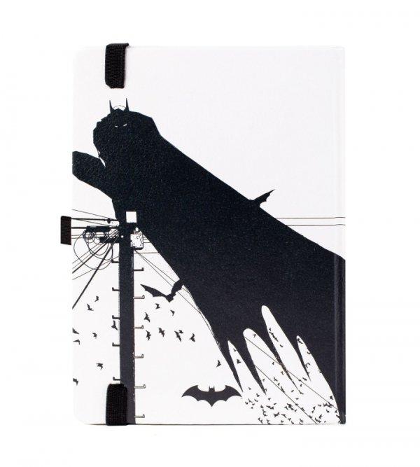Batman Arctic - notes