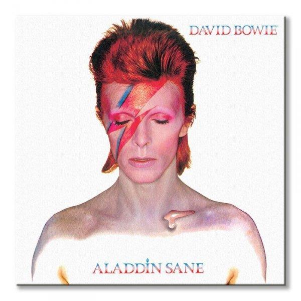David Bowie Aladdin Sane - obraz na płótnie