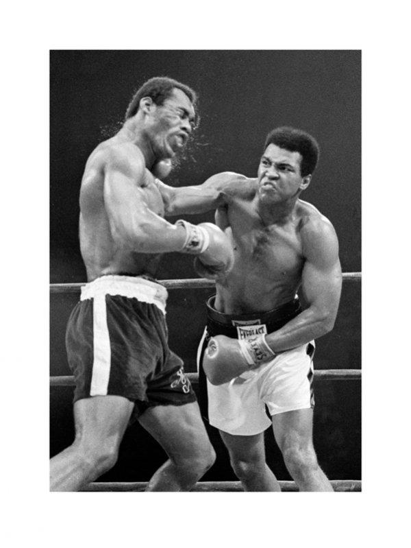 Muhammad Ali (Norton) - reprodukcja