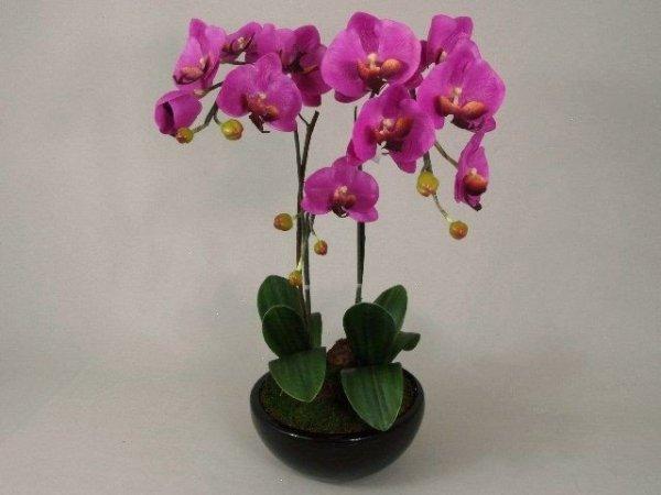 Sztuczny storczyk - Orchidea - W doniczce - 37x65cm - decoart24.pl