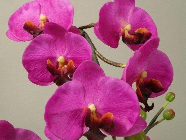 Storczyki sztuczne - Orchidea w doniczce Amarantowy - sklep internetowy decoart24.pl