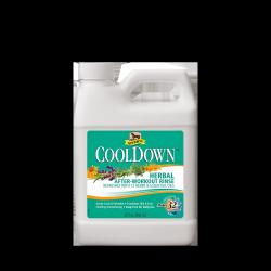 ABSORBINE CoolDown wcierka chłodząca 946ml 24H