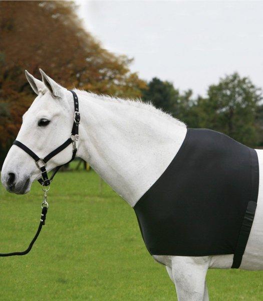 WALDHAUSEN Ochraniacz na klatkę piersiową konia