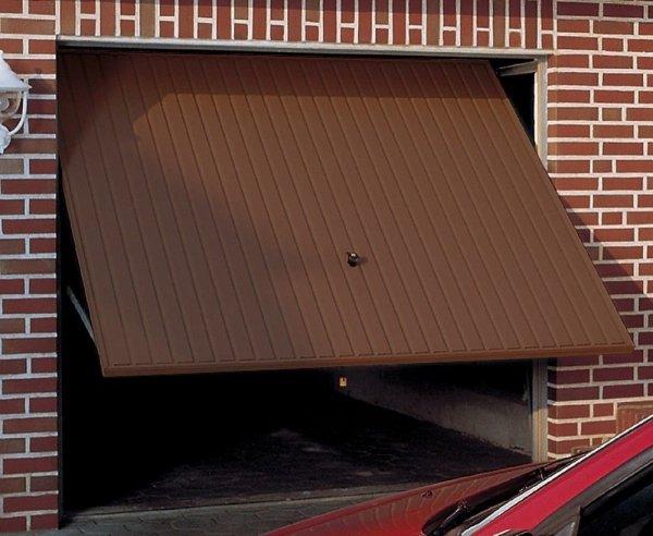Brama uchylna N 80, 2500 x 2075, Wzór 902 z drzwiami, kolor do wyboru