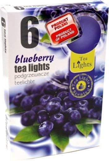 """PODGRZEWACZ 6 SZTUK TEA LIGHT """"Blueberry"""""""