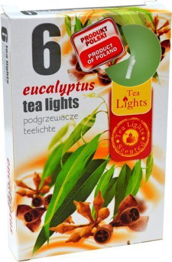 "PODGRZEWACZ 6 SZTUK TEA LIGHT ""Eucaliptus"""