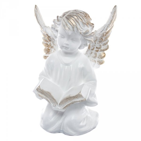 Anioł z książką